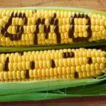 обязательной маркировки пищевой продукции знаком «ГМО»