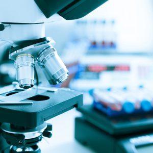 Регионам рекомендовано возобновить работу органов по сертификации и лабораторий
